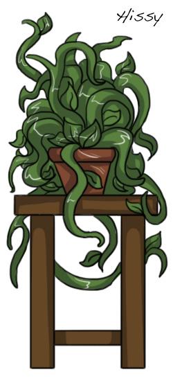 The Plant, Hissy